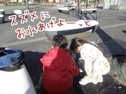 DSC09445-2.jpg